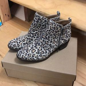Lucky Brand Leopard Basel Bootie! NWT!